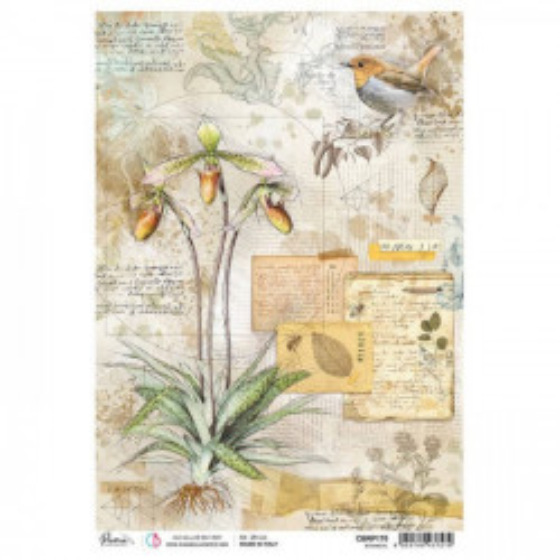 Papel de arroz A4 Botanical