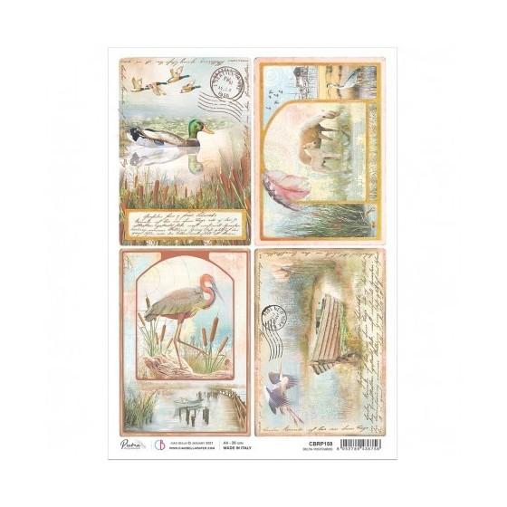 Rice Paper A4 Delta Postcards