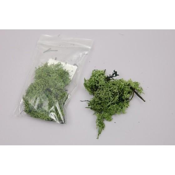 Musgo Verde Claro 15 gr.