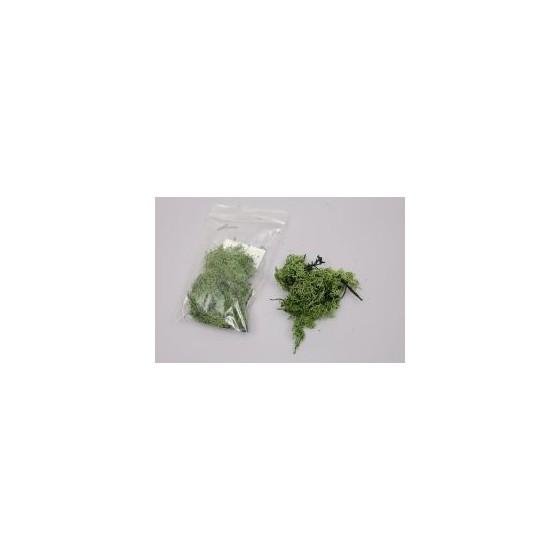 Musgo 15 G. Verde Os.